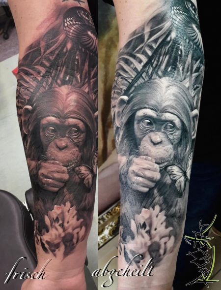 ape healed
