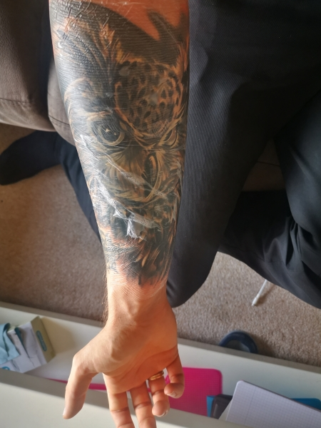 Eule Cover up, 2. Sitzung