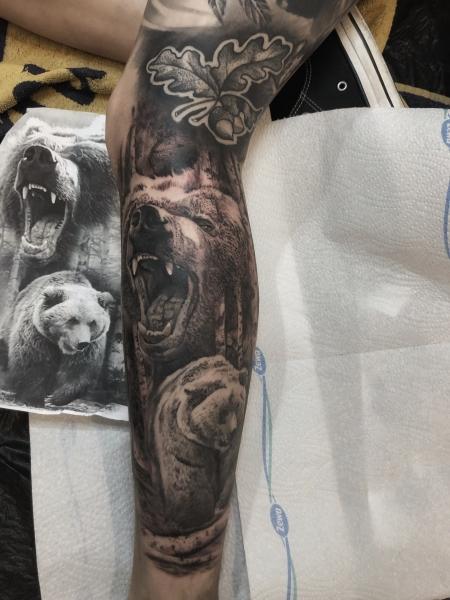 Grizzly Bären , gestochen von Constantin Schuldt