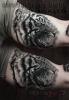 Healed tattoo-Tiger