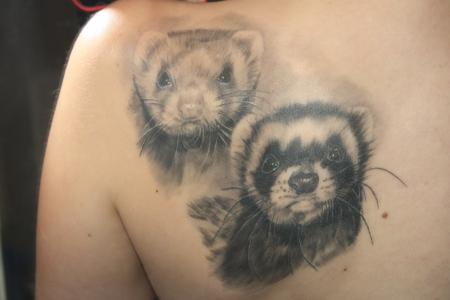 Frettchen auf der Schulter