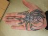 Spinne auf der Handfläche