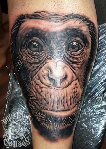 Schimpansen Portrait auf dem Schienbein