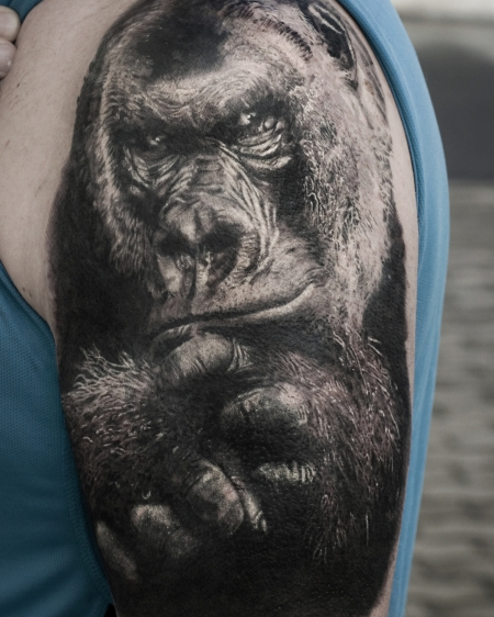 Cover up Gorilla