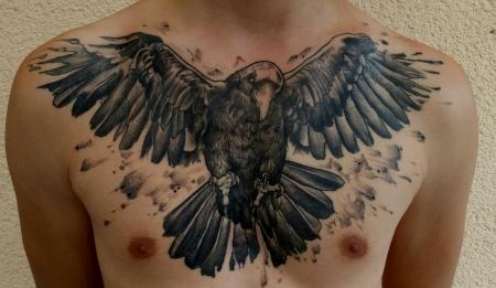 Krähe (Crow)