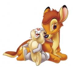 bambi50's Bild