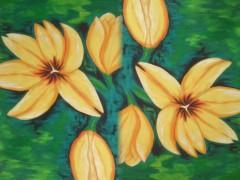 Sunflower_62's Bild
