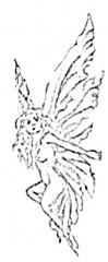 Strandelfe's Bild