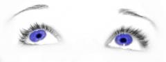 borboleta's Bild