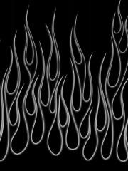 FlameZ's Bild
