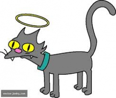 kitty galore's Bild