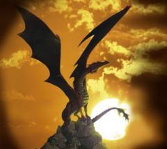 Sundowner's Bild