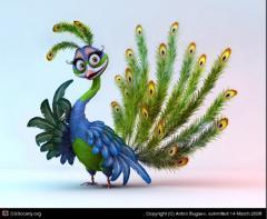 Peacock's Bild